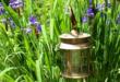 Gartenbeleuchtung 110x75 - Licht schafft Wohlbefinden im Garten