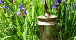 Gartenbeleuchtung 310x165 - Licht schafft Wohlbefinden im Garten